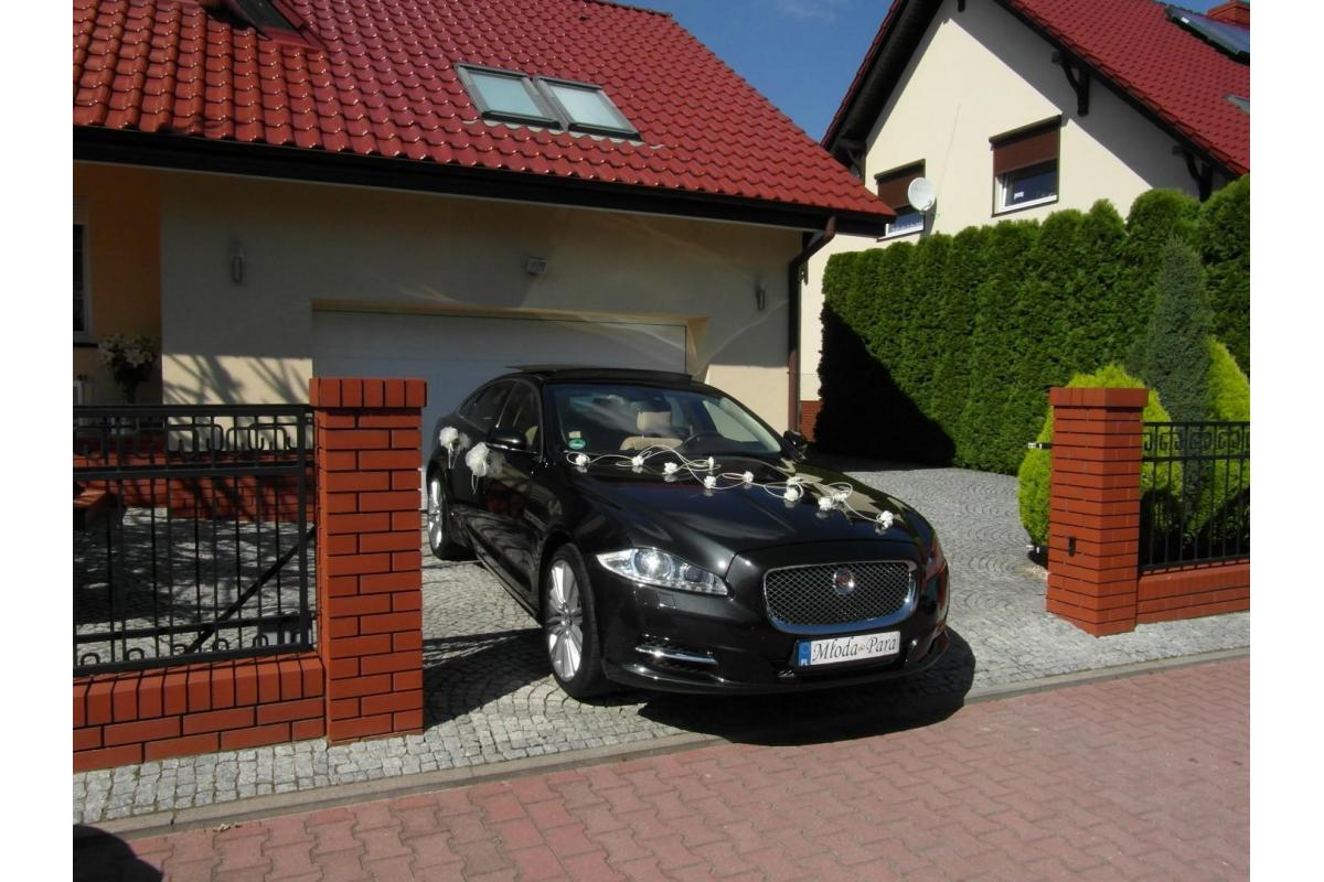 Jaguar XJ, Jaguar XF prestiżowe samochody do ślubu Kraków www.auto-na-slub.pl