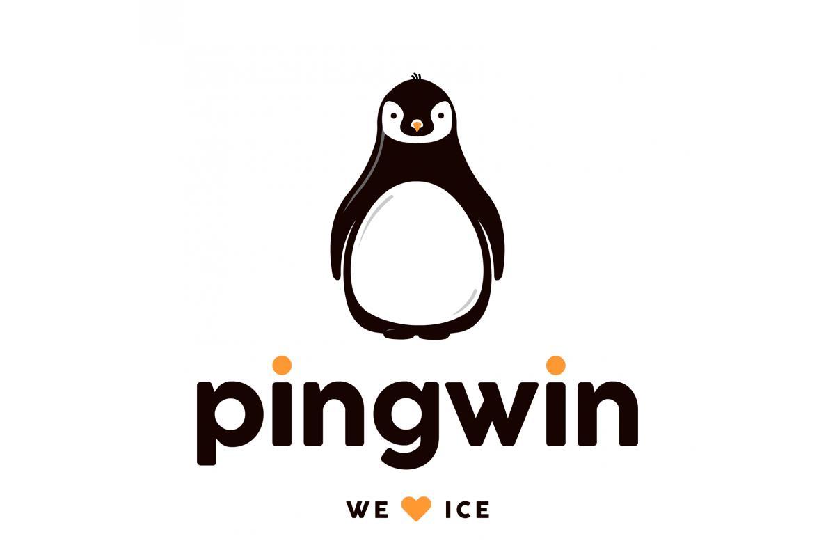 Dystrybucja lodu kruszonego oraz w kostkach PINGWIN