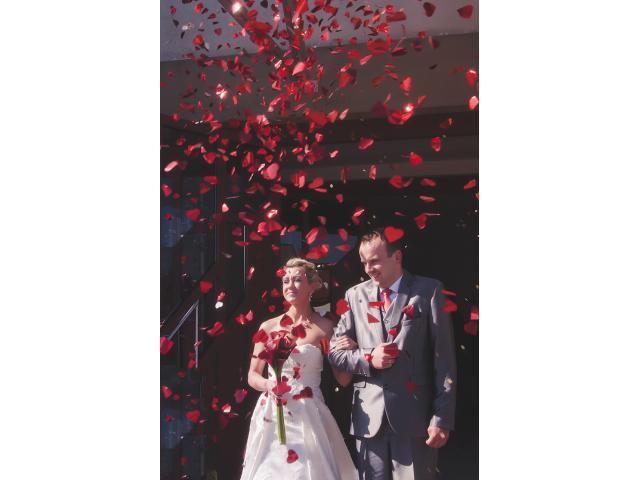 Fotografia ślubna- Chełm