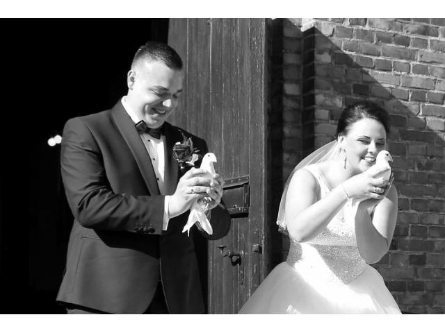 Wypuszczenie Białych gołebi na ślubie . Super Atrakcja