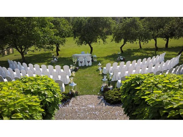 Expert Wedding